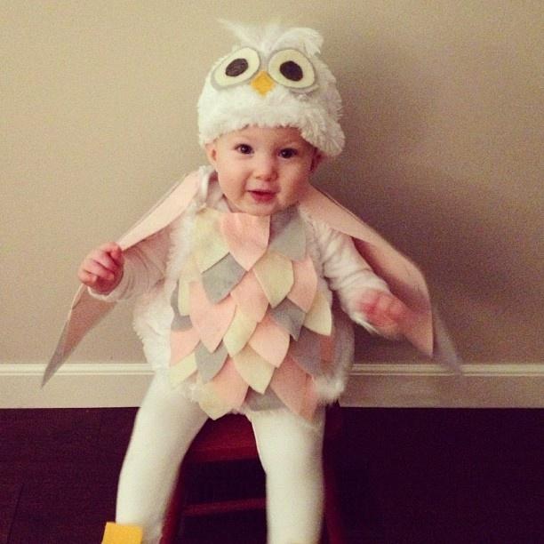 my nieces baby owl costume handmade - Baby Owl Halloween Costumes