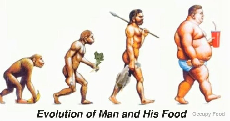evolution of man and his food