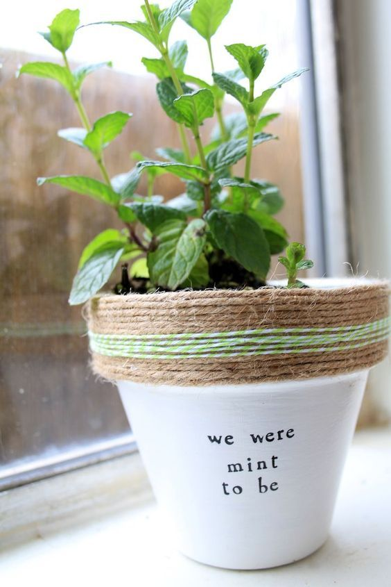 Plant Puns Diy We Were Mint To Be Funny Create Your