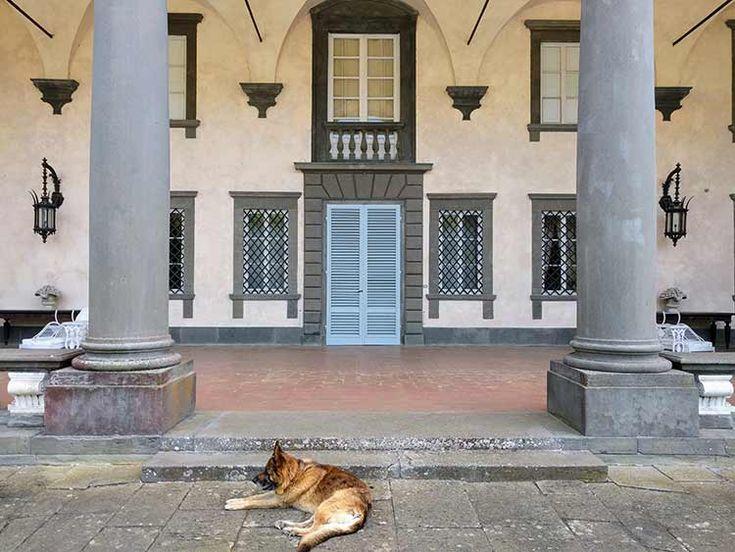 Villa Oliva: A Tuscan Villa to Visit  https://www.wanderingitaly.com/blog/article/1108/villa-oliva
