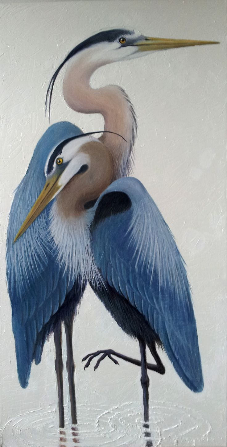 "Great Blue Heron 48""x 24"" oil on canvas $1100"