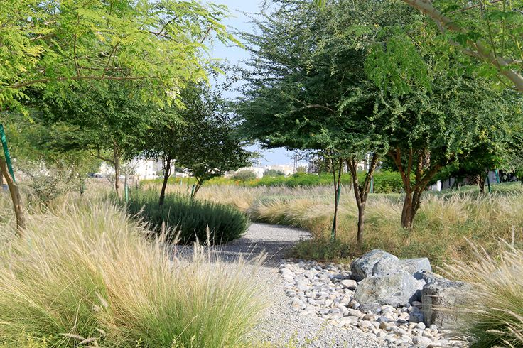 Wadi Al Azeiba by Atelier Jacqueline Osty & Associes 02 « Landscape Architecture Works | Landezine