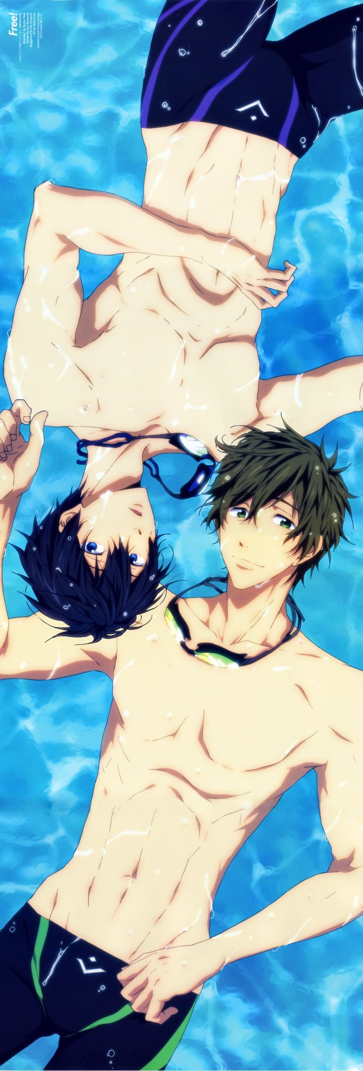 Free! | Makoto | Haruka | MakoHaru | otp | Offical art