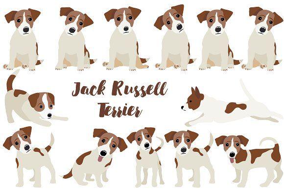 Jack Russell Terrier by Orangepencil on @creativemarket
