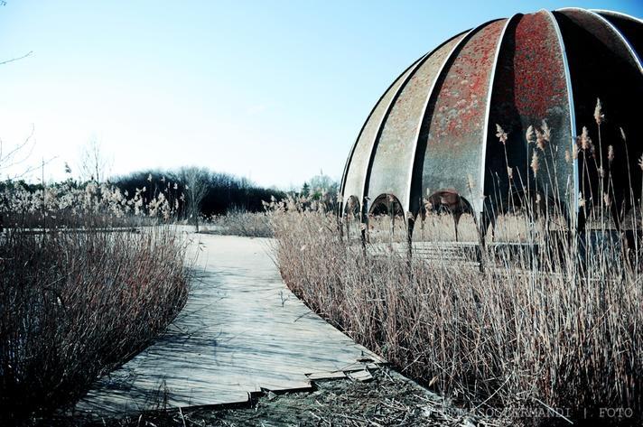 Disco Woodpecker, Milano Marittima, Ravenna, Italy   rethink the abandoned world
