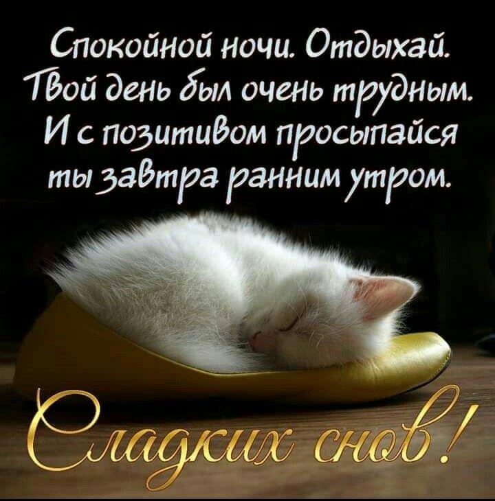 Открытки спокойной ночи сладких снов девушке журнал
