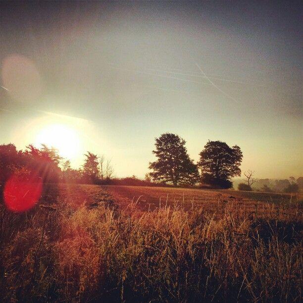 Beautiful September morning. Henwick,Thatcham