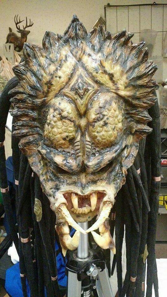 the horned king predator pinterest king and the o 39 jays. Black Bedroom Furniture Sets. Home Design Ideas