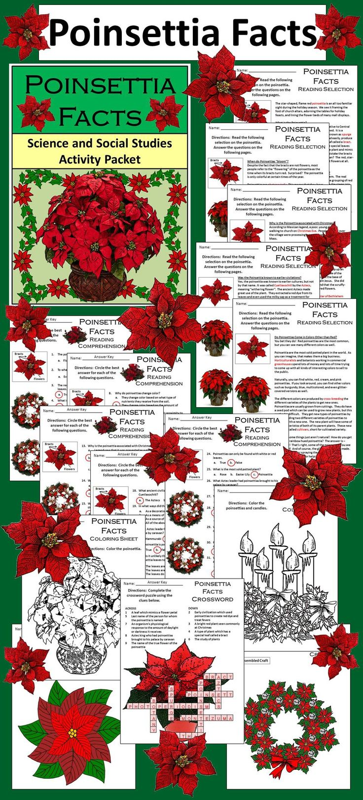 Poinsettia Facts Science & Social Studies Christmas Activity Packet: This colorful cross-curricular Christmas activity packet details the biology, history, and tradition surrounding beloved Christmas plant, the poinsettia.  Contents include: * Five Christmas reading selections and comprehension quizzes * Poinsettia vocabulary crossword puzzle * Poinsettia construction craft * Poinsettia wreath construction craft * Poinsettia coloring sheets * Answer keys