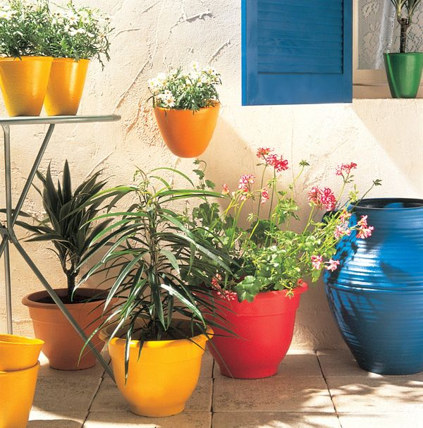 1000 ideas about plastic plant pots on pinterest plastic flower pots garden crafts and diy - Mediterranean garden plants colors and scents ...