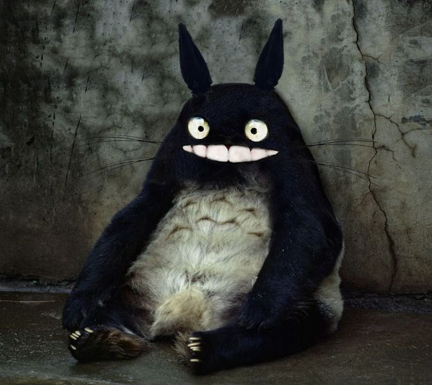 Totoro from My Friend Totoro . | Studio Ghibli Characters Reimagined in Real Life