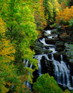 Yadkin River, Uwharrie National Forest: river in Fall month in North Carolina