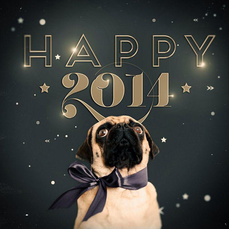 Happy new year to all my dear followers:-)