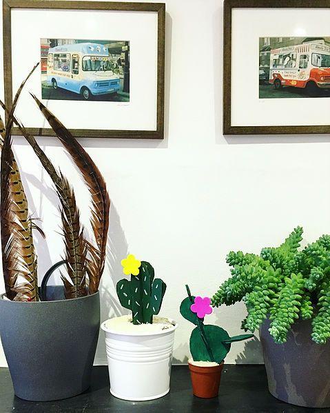 DIY 3D Cactus Garden   CRAFTD Kids   Workshops