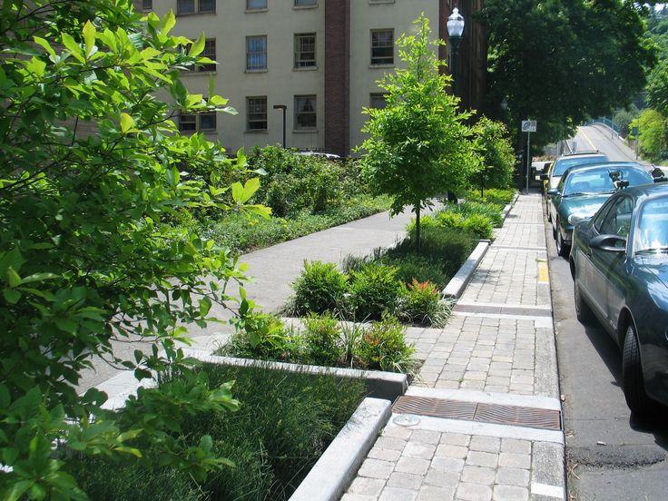 It's not hard to imagine these bioretention planters in most urban streets - treating polluted road runoff naturally whilst greening the city.