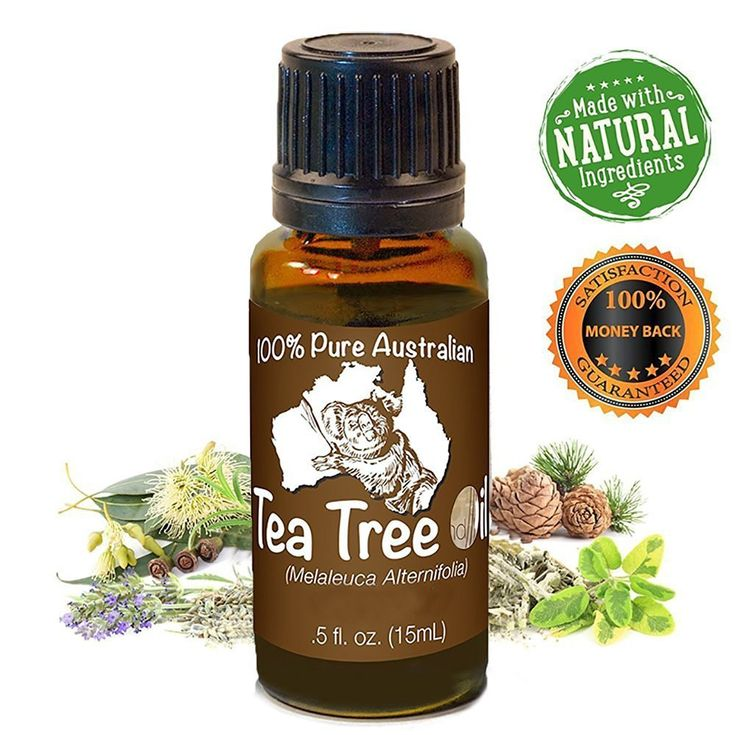 Koala Australia Natural Tea Tree Essential Melaleuca Oil, 15 ml -- Quickly view this special  product, click the image : NOW essential oils