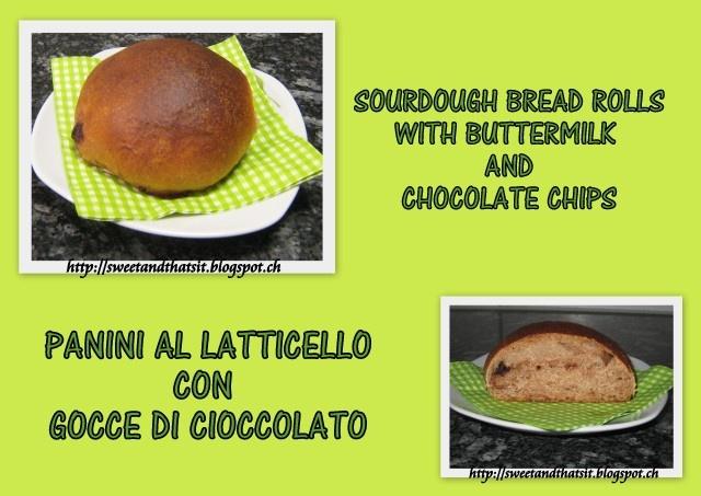 Sweet and That's it: Sourdough Bread Rolls with Buttermilk and Chocolate Chips - Panini al Latticello e Lievito Madre con Gocce di Cioccolato