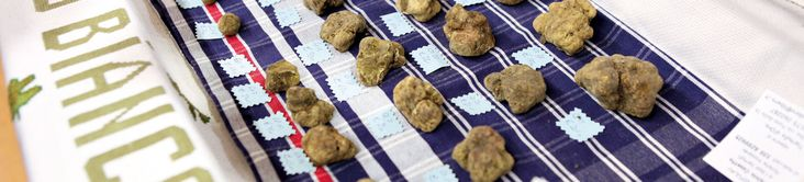 The Alba White Truffle Festival.  Nothing like it in the world... delicious!