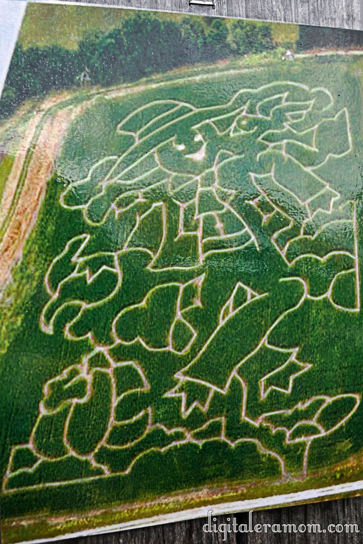 10 acre scarecrow corn maze at Louisburg Cider Mill in Kansas.