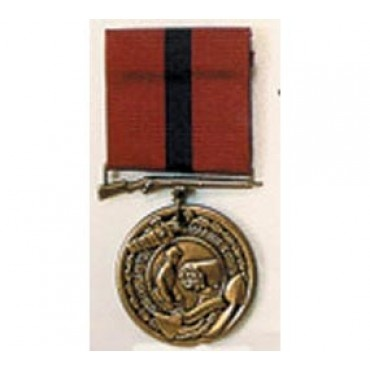 Good conduct medal template free download programs anayasius for Army good conduct medal certificate template
