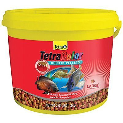 14 best just keep swimming images on pinterest fish aquariums tetra 77269 tetracolor 2 in 1 large cichlid pellets 264 pound fandeluxe Choice Image