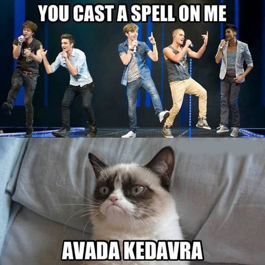 Any of my Directioner friends Potterheads as well? Because this is like the funniest thing I've ever seen.