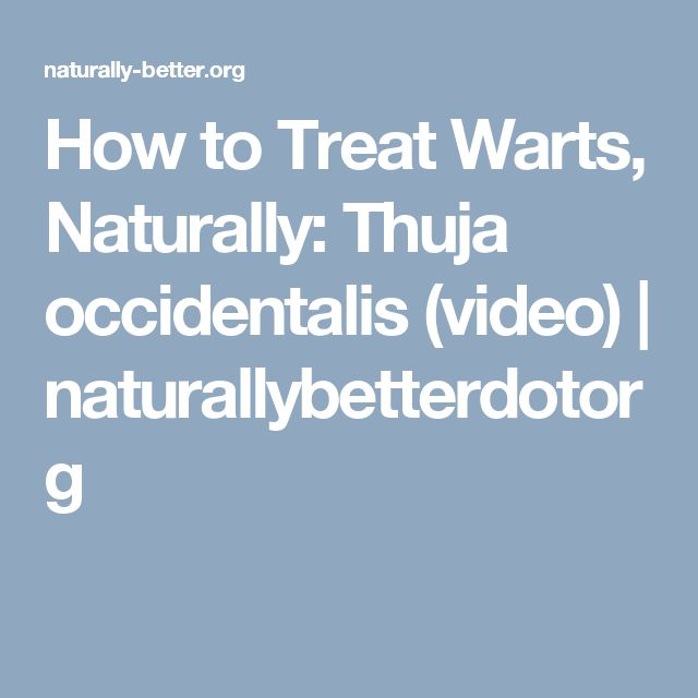 How to Treat Warts, Naturally:  Thuja occidentalis (video) | naturallybetterdotorg