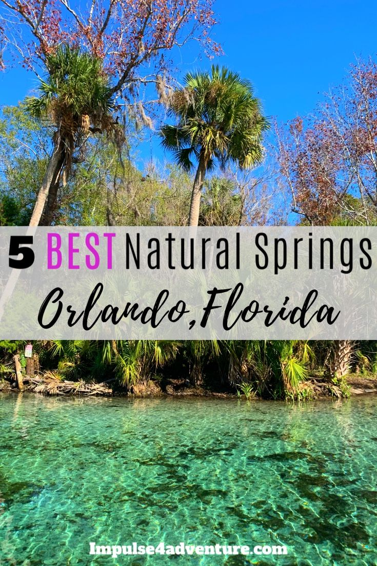 The 5 Best Natural Springs Near Orlando Impulse4adventure Florida Adventures Springs Near Orlando Beaches Near Orlando Florida Adventures