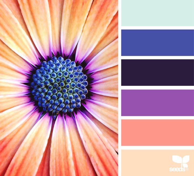Color Flora