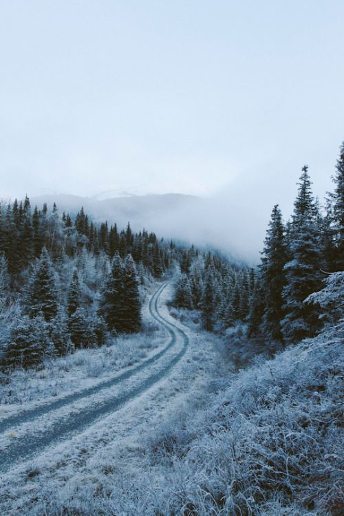 banshy:  Alaska by Alex Strohl