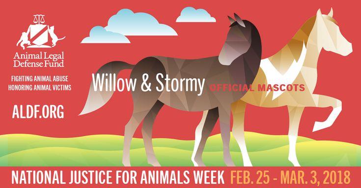 Week 3 legal defenses