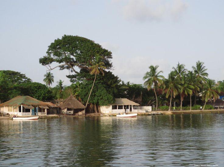 Thalassa. Sénégal, entre fleuves et océan. 17/10/14. 20h45. France 3