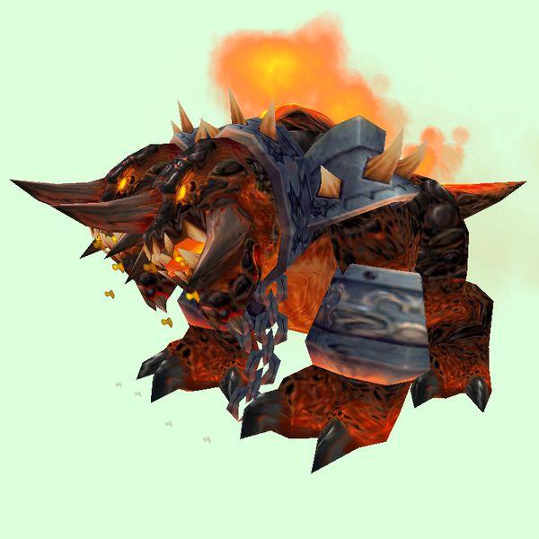 Orange Core Hound Hound Pets World Of Warcraft