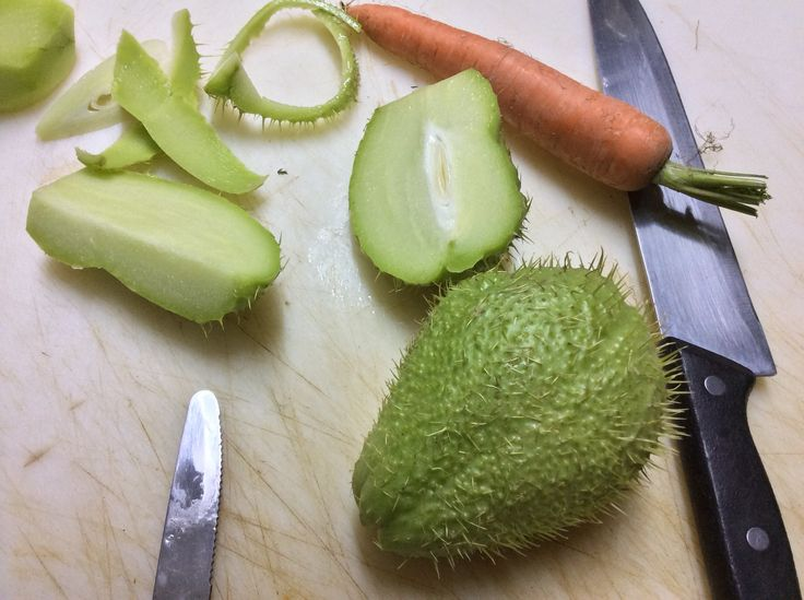 La minestra di zucchina spinosa o centenaria o chayote e' una minestra insolita perché questa zucchina non si trova sempre sui banchi alimentari .