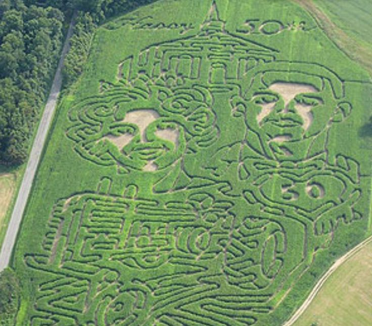 A corn maze done by a farmer to surprise his wife on their 50th anniversary.