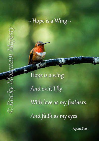 hope hummingbird inspirational print male rufus