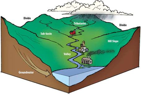 Watershed Tributary Diagram 17 Best images about w...