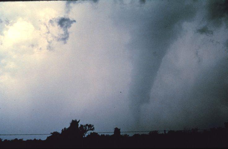 Tornado Damage: The Enhanced Fujita Scale