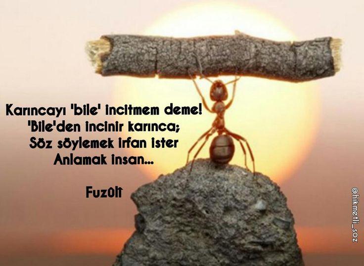 #Fuzuli #Anlamakİnsan ...