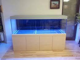 Znalezione obrazy dla zapytania akwarium w zabudowie