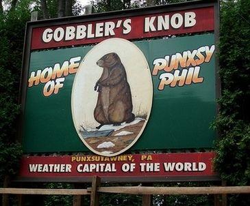 Punxsutawney Phil Groundhog Day | watch punxsutawney phil live stream video online see the groundhog day ...