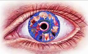 Image result for iridologia