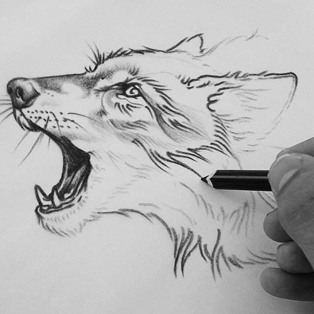 25 Best Ideas About Pencil Tattoo On Pinterest: Instagram Post By Rik Lee (@rikleeillustration)