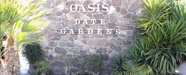 from Jesus is oasis dating good