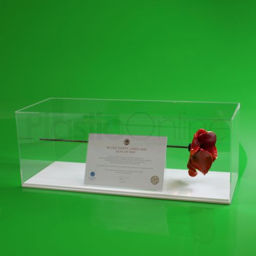 Tower of London Poppy Display Case Model G