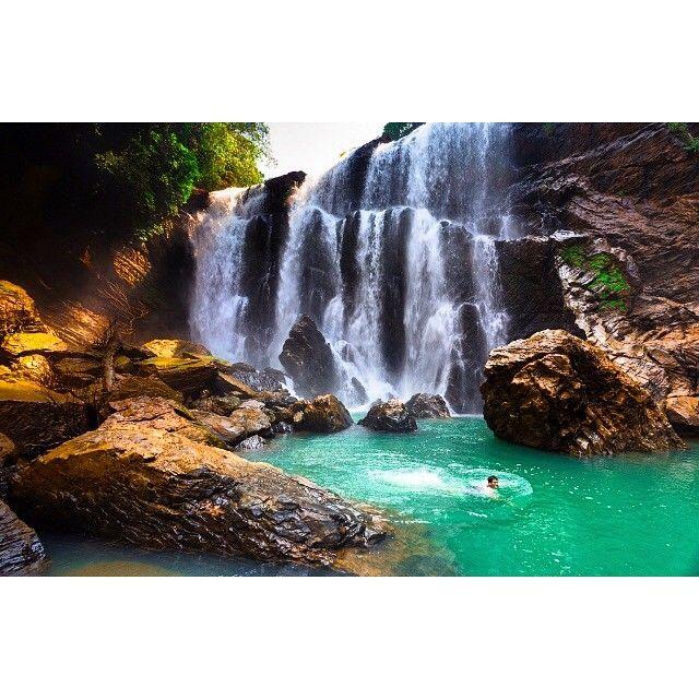 ಸಥೂಡಿ ಜಲಪಾತ  Satoddi Falls is a waterfall in India that is formed by several unnamed streams near Kallaramarane Ghat, Uttara Kannada District, near #Sirsi, and 32 km from #Yellapur. It is about 15 metres (49.2 feet) tall. The stream then flows into the #backwaters of the #Kodasalli Dam, into the #Kali River.