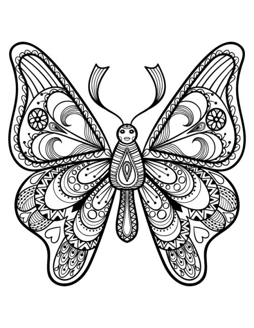 Advanced Butterfly Coloring Pages : Best advanced animal coloring pages images on pinterest