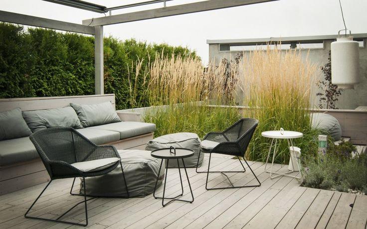 dom pod poznaniem architekt trawa na dachu i tarasie - Szukaj w Google