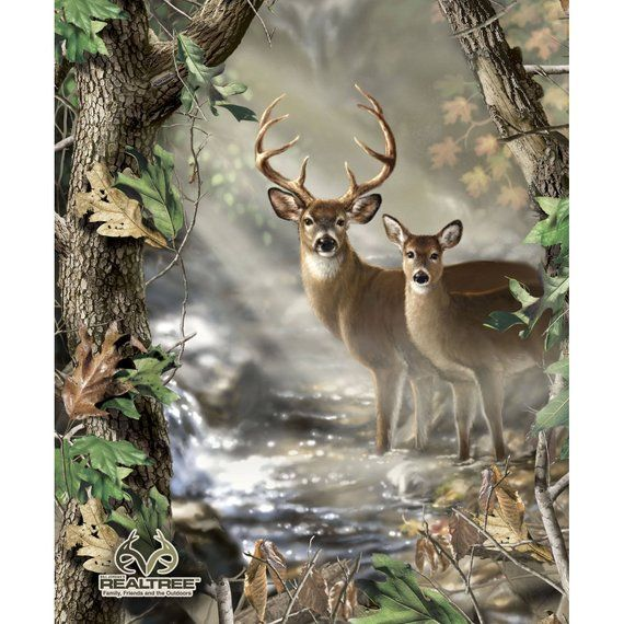 Realtree Deer Panel By Print Concepts 9903 Cotton