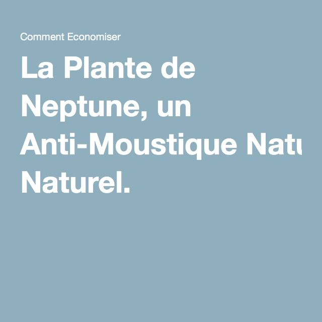 Meer dan 1000 idee n over anti moustique op pinterest for Anti moustique naturel maison